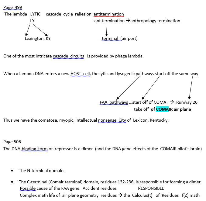 p-1006-1-2