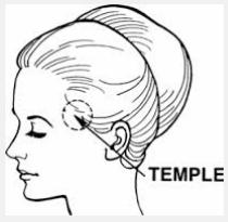 temple brain